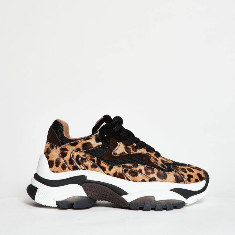 Ash-sneakers-maculate-leopardate